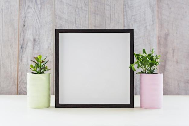 Biała ramka między dwiema roślinami w pojemnikach z recyklingu