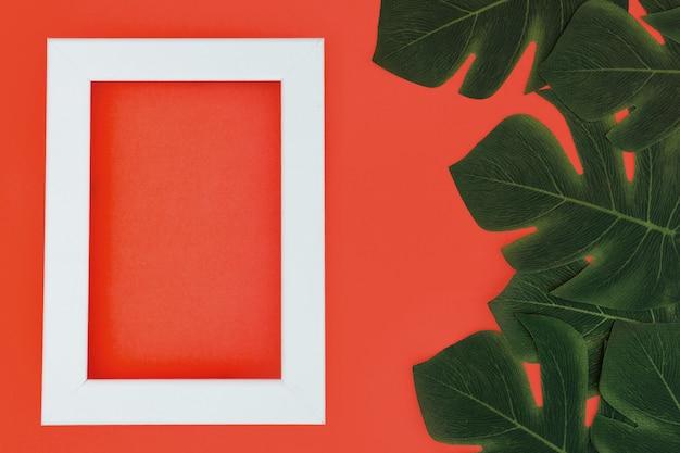 Biała ramka z roślinami tropikalnymi