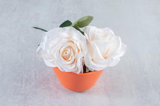Biała róża w misce, na białym tle.