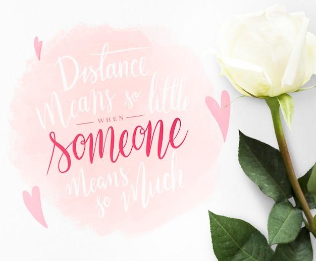 Biała róża z wiadomością walentynkową