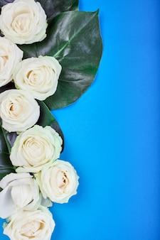 Biała róża z zielonymi liśćmi na niebieskim tle.