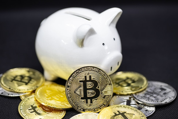 Biała skarbonka i złote monety kryptograficzne stoją na czarnym tle, aby zaoszczędzić pieniądze, bogactwo i koncepcję finansów oraz miejsce na projekt.
