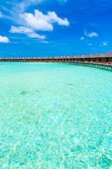 Biała tropikalna plaża na malediwach z kilkoma palmami i błękitną laguną