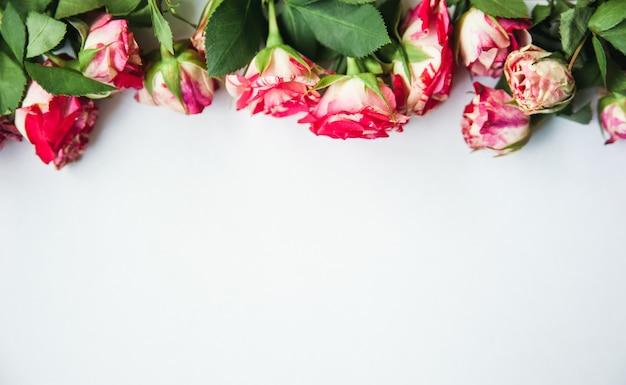 Biała z różami wzdłuż górnej krawędzi