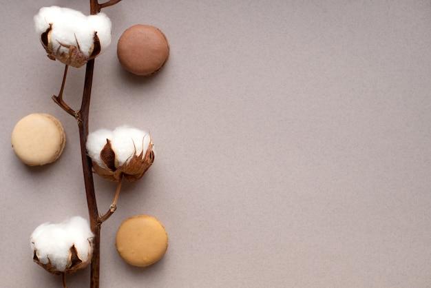 Białe bawełniane kwiaty i francuskie makaroniki na jasnej pastelowej ścianie