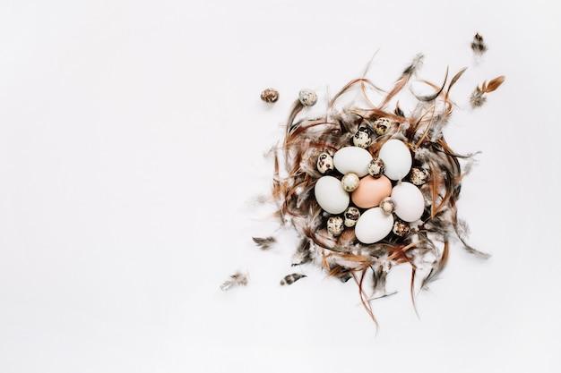 Białe, brązowe pisanki, jaja przepiórcze w gnieździe ozdobione piórami na białej powierzchni