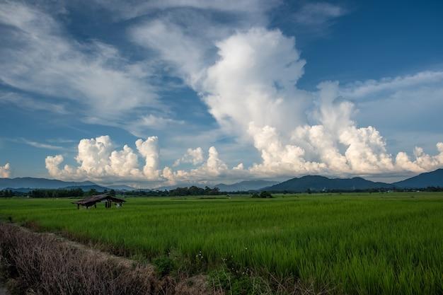 Białe chmury mają dziwny kształt i górę. niebo i otwarta przestrzeń mają góry poniżej. chmury unoszące się nad górami.