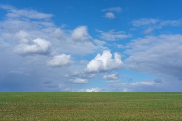 Białe chmury na niebieskim niebie nad zielonym polem