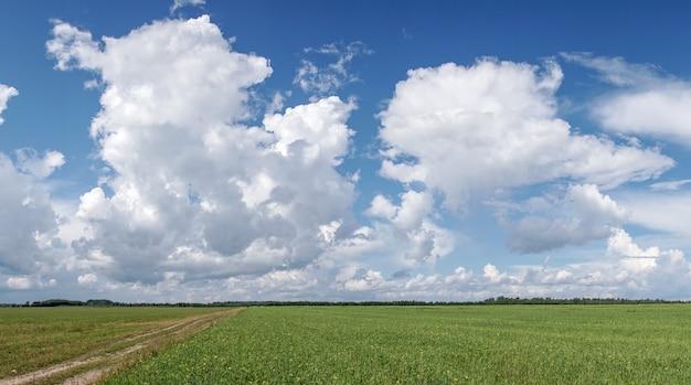 Białe chmury w błękitne niebo.