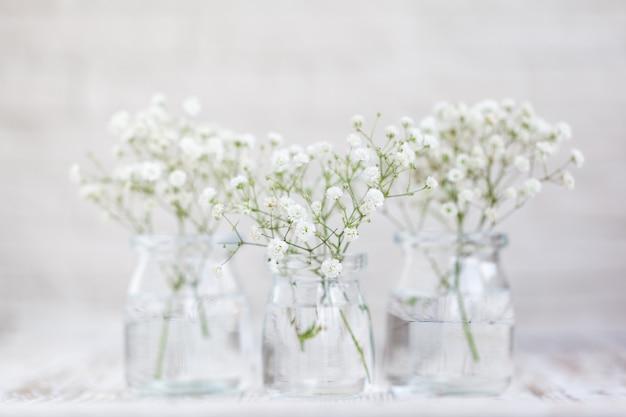 Białe, delikatne kwiaty łyszczec w szklanych wazonach na jasnym tle. kompozycja kwiatowa we wnętrzu domu. nieostrość