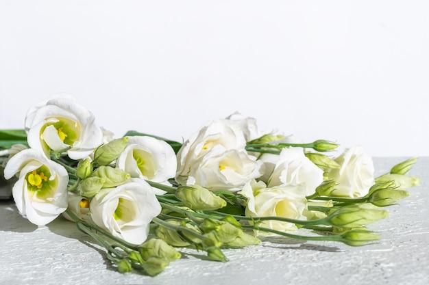 Białe delikatne małe różyczki na jasnym tynkowym tle.