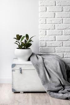 Białe drewniane pudełko z młodą gumową rośliną w białej doniczce i szarym miękkim kocem z polaru. biała ściana z cegieł na tle