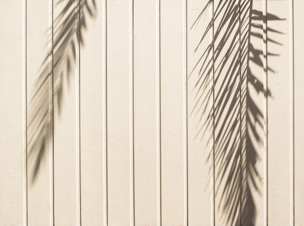 Białe drewniane tło z cieniem liści palmowych. naturalna tekstura