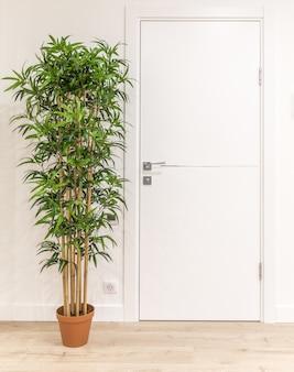 Białe drzwi w nowoczesnym domu z zielonym drzewem