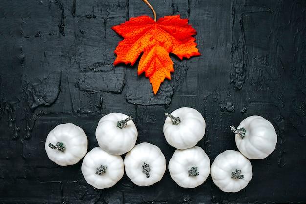Białe dynie z liściem klonu na czarnej teksturowanej płasko transparent świątecznej reklamy. święto wystroju halloween. modna kompozycja kolor, lato