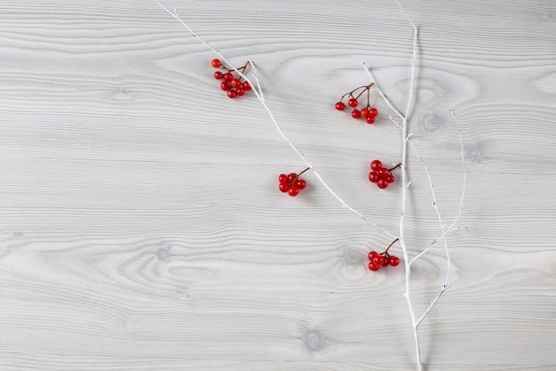 Białe gałęzie i czerwone jagody