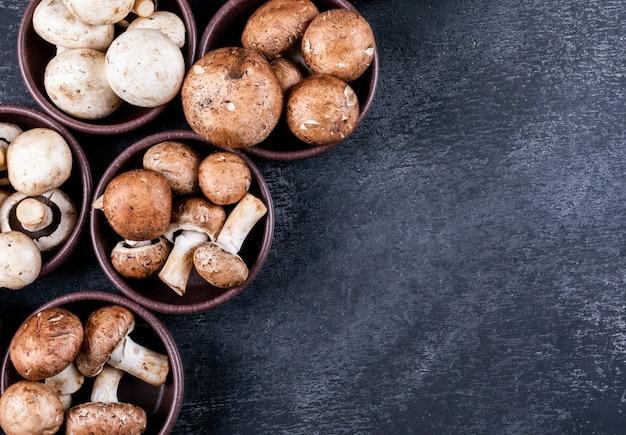 Białe i brązowe grzyby w wielu miskach