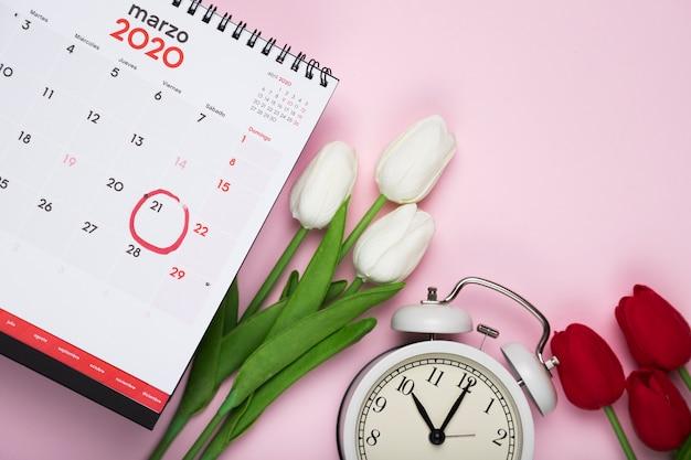 Białe i czerwone tulipany obok kalendarza i zegara
