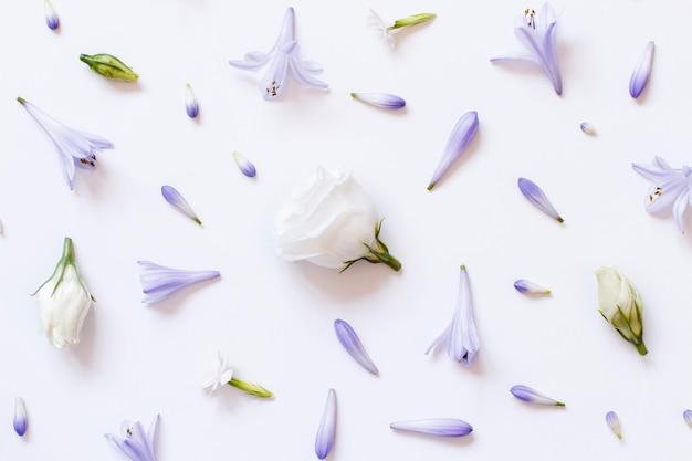 Białe i jasnofioletowe kwiaty na białym tle widok z góry