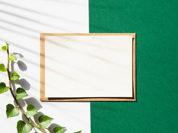 Białe i zielone tło z białym kocem i liściastą gałęzią z cieniem