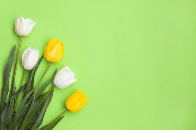 Białe i żółte tulipany na zielono.