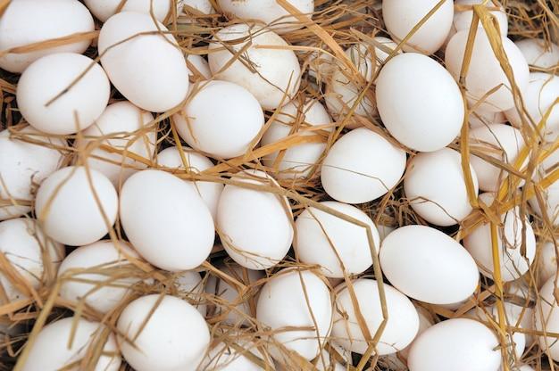 Białe jaja w gnieździe siana na rynku