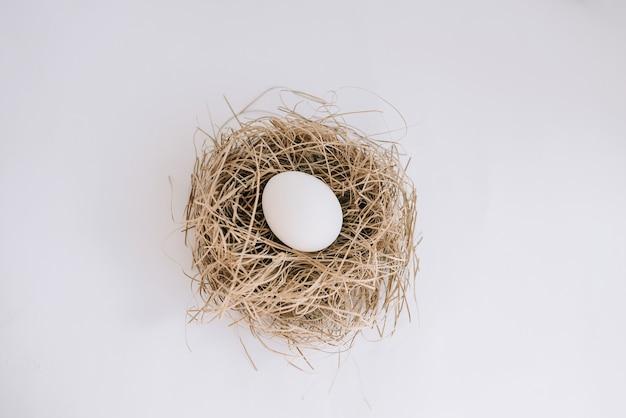 Białe jajko w gnieździe