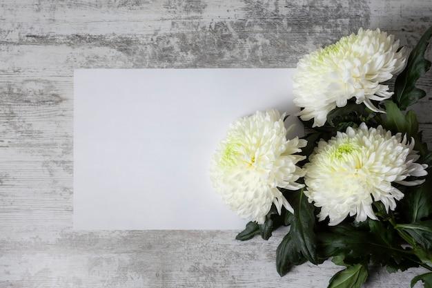 Białe kwiaty chryzantemy na drewnianym tle
