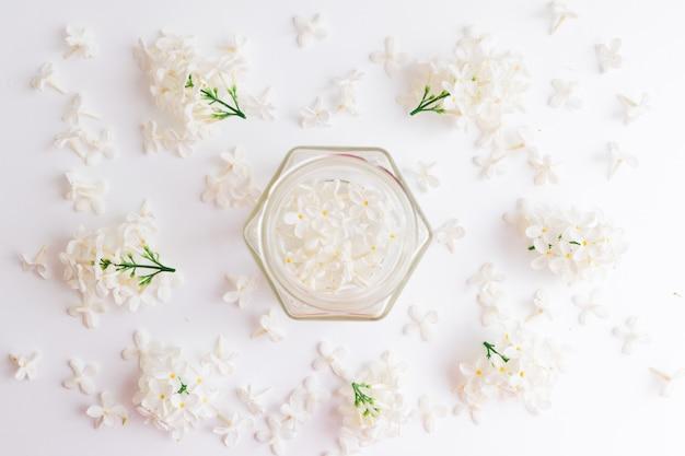 Białe kwiaty czeremchy w przezroczystym szklanym słoju na białym tle