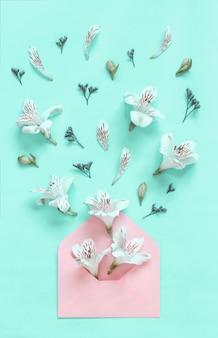 Białe kwiaty eksplodujące z jasnoróżowej koperty na jasnozielonym tle widok z góry