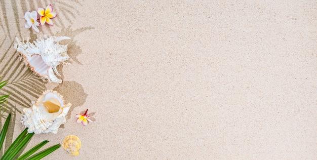 Białe kwiaty frangipani i zielone liście palmowe z białymi muszelkami na tle piasku