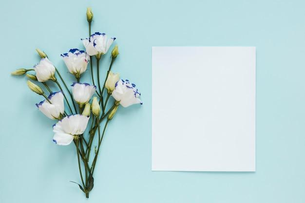 Białe kwiaty i pozostaw z białym kawałkiem papieru