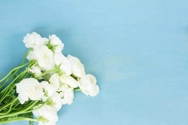 Białe kwiaty jaskier na niebieskim tle drewnianych