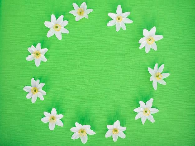 Białe kwiaty. leżał płasko. koncepcja lato natura.
