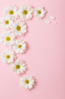Białe kwiaty na jasnoróżowym tle