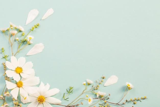 Białe kwiaty na tle papieru
