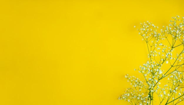 Białe kwiaty na żółtym tle miejsca kopiowania