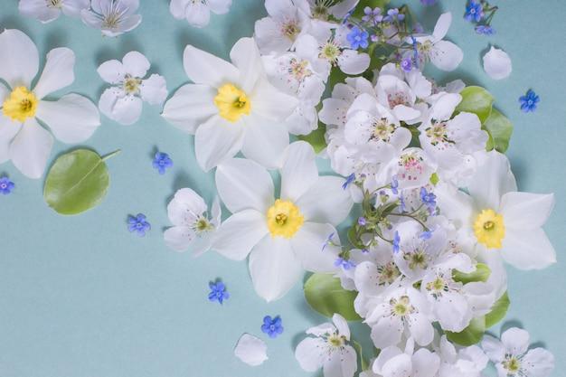 Białe kwiaty narcyzów i wiśni na zielonym papierze