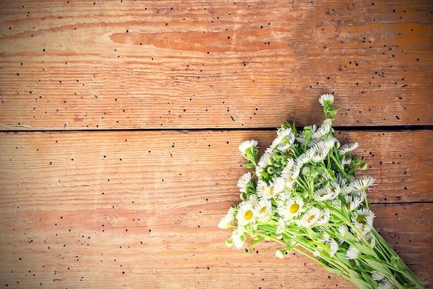 Białe kwiaty ogrodowe małe rumianek na podłoże drewniane. prosty bukiet na stare deski tekstury.