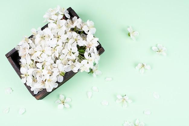 Białe kwiaty wiśni z płatkami i w drewnianym pudełku na zielono