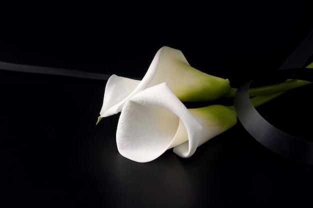Białe kwiaty zantedesia z żałobną wstążką na czarnym tle