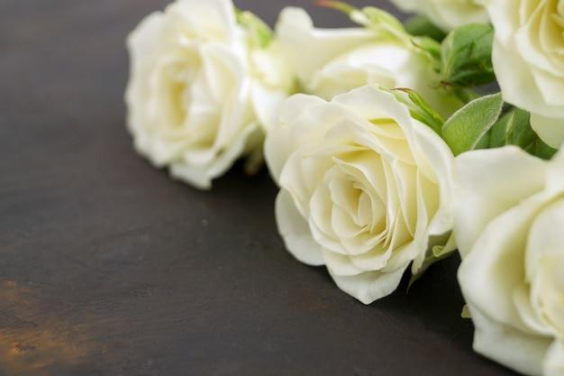 Białe kwitnące róże na ciemnym tle.