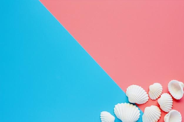 Białe morze skorupy na różowym i błękitnym tle