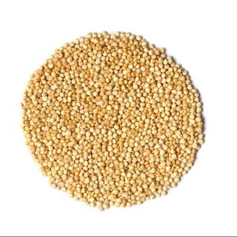 Białe nasiona komosy ryżowej