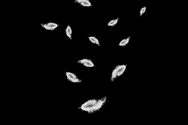 Białe pióra spadające w powietrze.