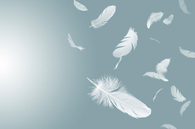 Białe pióra unoszą się w powietrzu.
