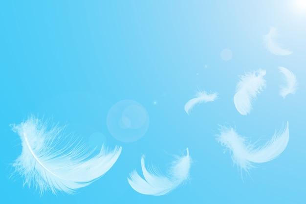 Białe pióra unoszące się na niebie w świetle słonecznym.