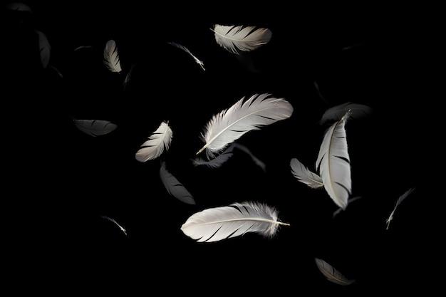 Białe piórko pływające w ciemności.