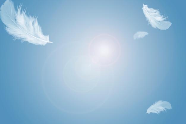 Białe piórko unoszące się na niebie.