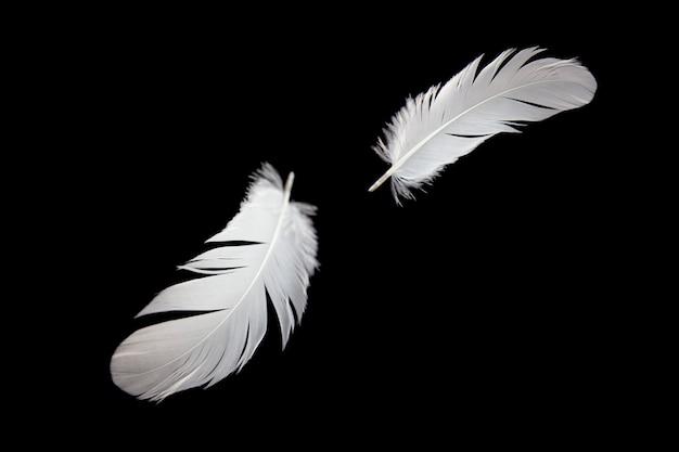 Białe piórko unoszące się w powietrzu. na białym tle na czarnym tle.